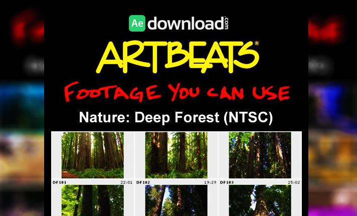 ARTBEATS - NATURE DEEP FOREST (NTSC)