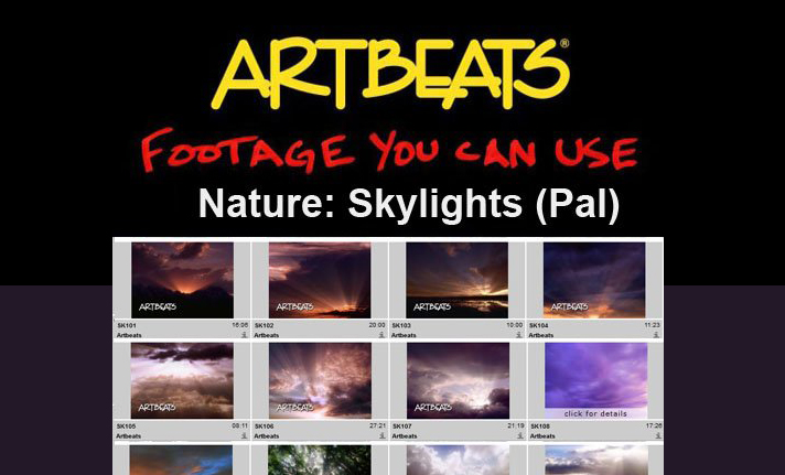 ARTBEATS - NATURE SKYLIGHTS (PAL)1