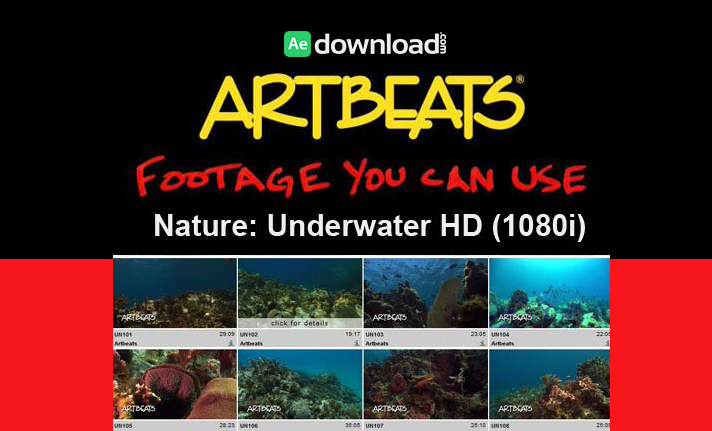Artbeats - Nature Underwater HD (1080p)1