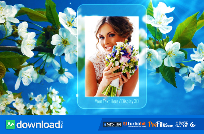 Photo Gallery Spring Blossoms Free Download After Effects Templates