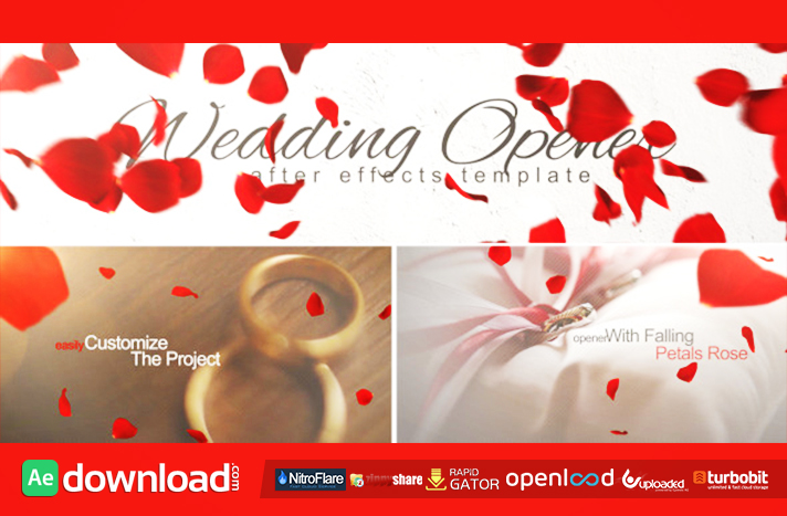 Wedding Opener free download (videohive template)