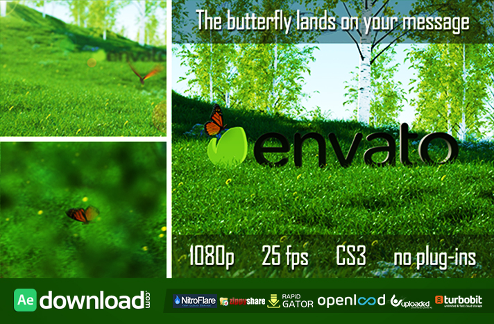 Butterfly Logo Reveal