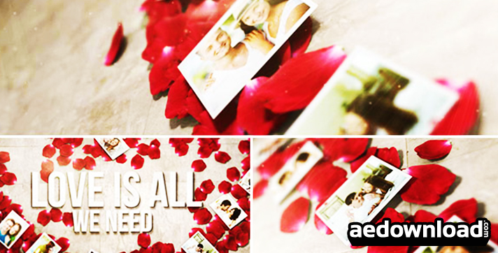 Rose Petals Heart - Photo Gallery