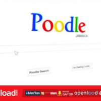 SEARCH ENGINE ADVERTISEMENT – FREE DOWNLOAD – VIDEOHIVE