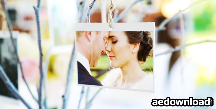 Photo Gallery at a Country Wedding