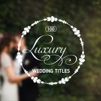 VIDEOHIVE 100 LUXURY WEDDING TITLES FREE DOWNLOAD