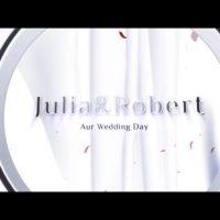 VIDEOHIVE WEDDING OPENER 12910634