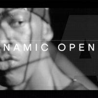 VIDEOHIVE DYNAMIC OPENER 21970595
