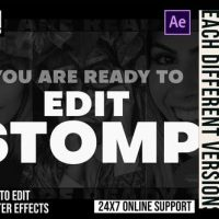 VIDEOHIVE MULTI TYPE STOMP